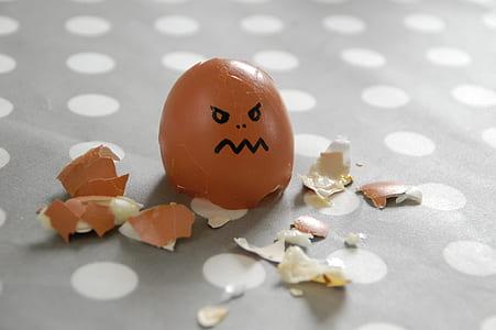 photo of egg shell