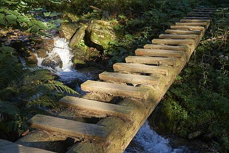 waterfalls with brown wooden bridge