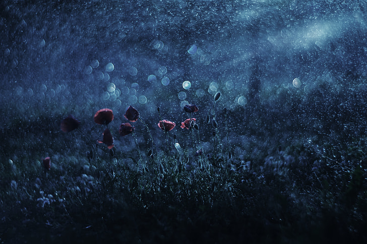 raindrop painting