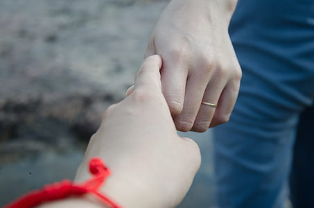 closeup photo of person's hand holding
