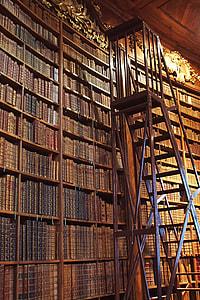 brown wooden ladder beside bookshelf inside the library
