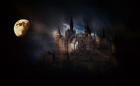 beige castle photo