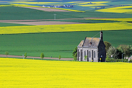 black concrete church on grass field