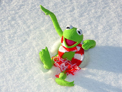 green tree frog plush toy on snow