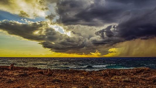 shore under gray cloudy sky
