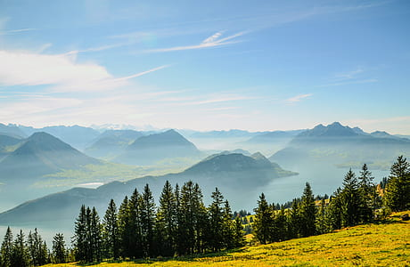 photo of green trees and mountains during daytime