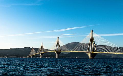 white and brown suspension bridge
