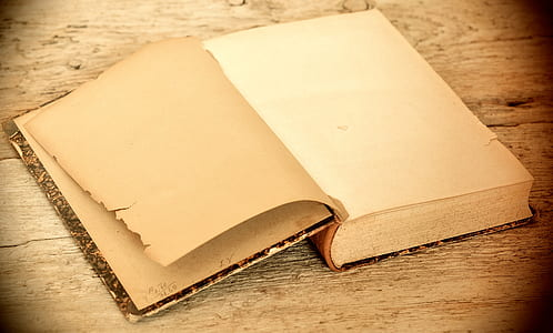 white and brown book