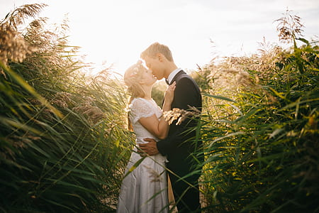 groom and bride kissing between green grasses
