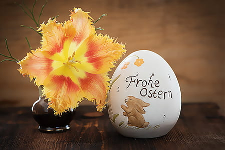 yellow petaled flower decor beside egg decor