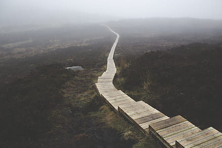 Brown Wooden Stairs on Body of Mountain