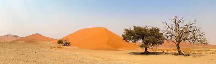 photo of green trees on desert during daytime