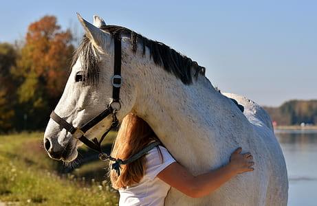 girl hugging white horse