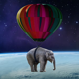gray elephant with purple hot air balloon on top of earth surface