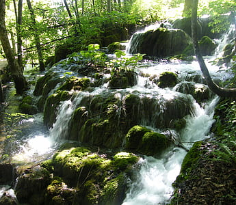 photo of waterfalls and green trees