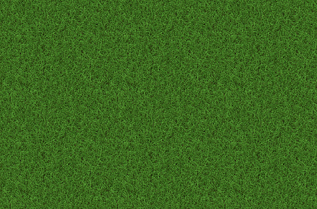 green grass, rush, grass, texture, background, pattern