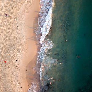 aerial view of beach shore with people swimming