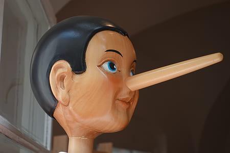 Pinocchio head bust