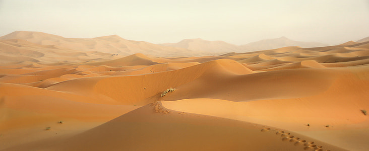desert with white sky
