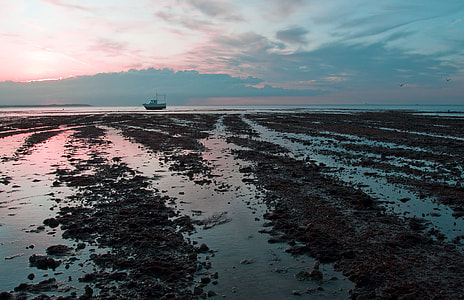 Wide-angle seascape shot captured at low tide on the coast of Whitstable, Kent, England