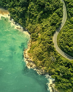 aerial photography of winding road near the sea