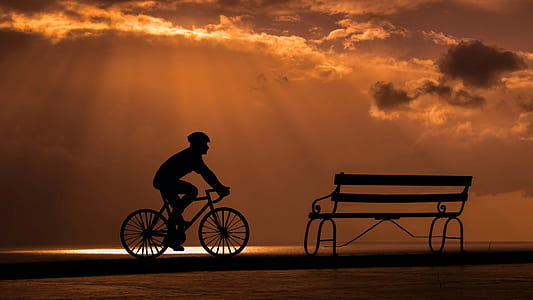 bench and bicycle