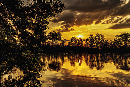 silhouette of trees near lake during sunset