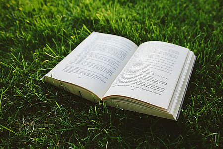 Book on the grass