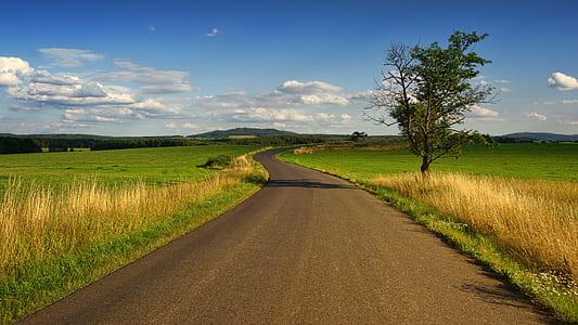 landscape photo of asphalt road between grass field