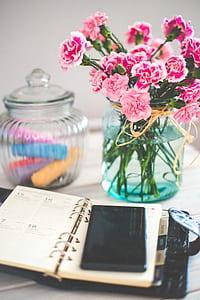 pink carnation flowers in vase