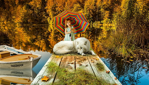 white dog and girl on brown wooden dock during daytime