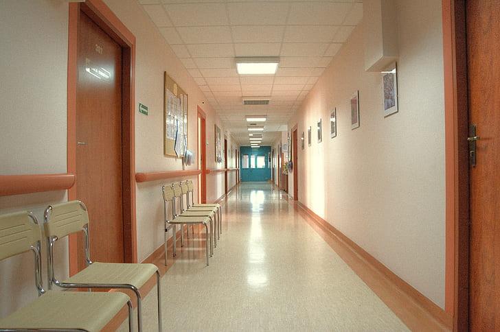 hall way and brown wooden doors