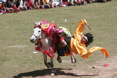 yellow dressed man riding on white horse