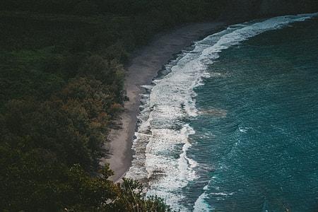blue and white beach near trees