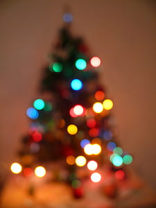 christmas tree, christmas, xmas, lights, winter, holiday