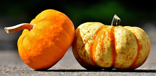 two orange pumpkins on gray concrete raod during daytime