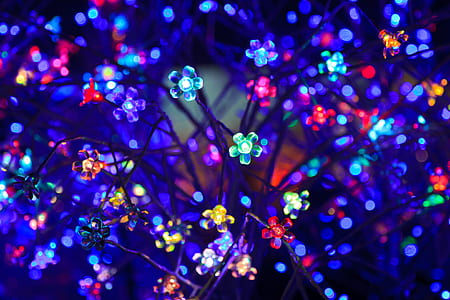 assorted-color flower string lights close up photo