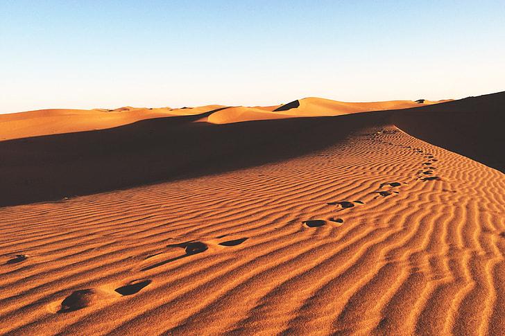 Landscape shot of desert sand dunes in Africa