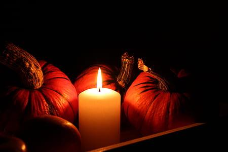lighted pillar candle beside pumpkins