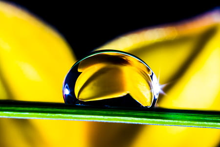 macro shot of droplet on leaf