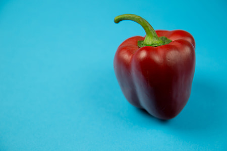 Red pepper on blue background