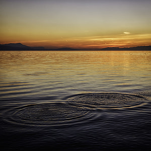 body on water during sunset