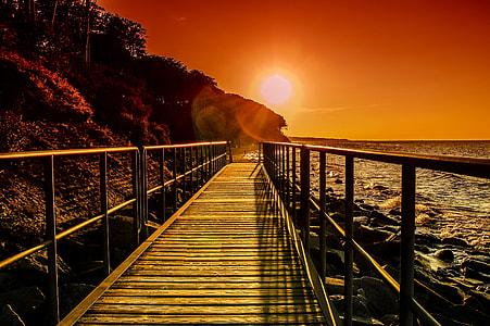 brown bridge near ocean