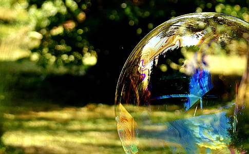 shallow focus photography of bubble