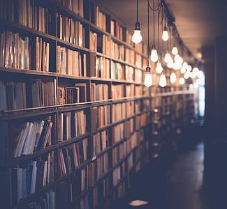 photo of beige light bulbs beside book shelves