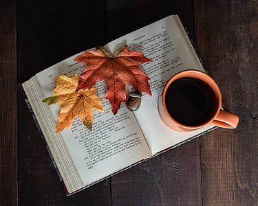 red ceramic mug on top on book