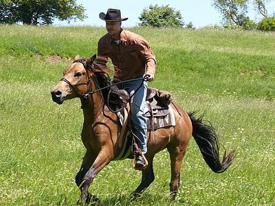 man riding horse during daytime