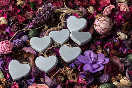 photo of heart decors on top of flowers