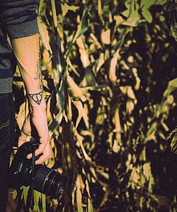 person holding DSLR camera standing near banana trees