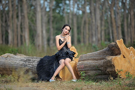 woman wearing black strapless cocktail dress sitting on tree log during daytime in selective-focus photography